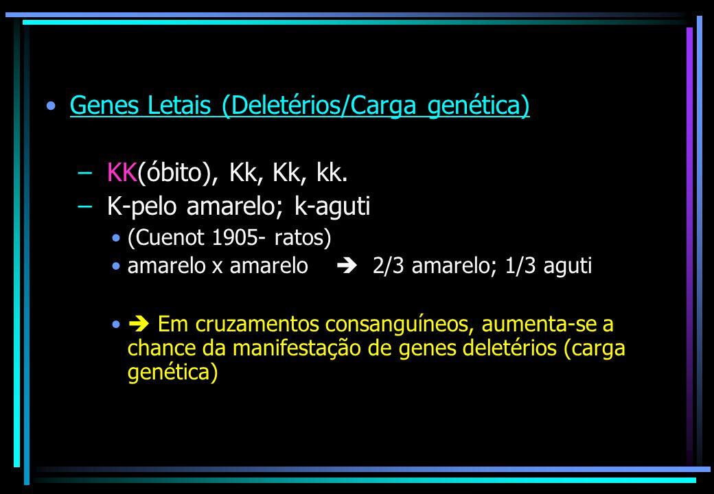 Genes Letais (Deletérios/Carga genética) – KK(óbito), Kk, Kk, kk. – K-pelo amarelo; k-aguti (Cuenot 1905- ratos) amarelo x amarelo  2/3 amarelo; 1/3