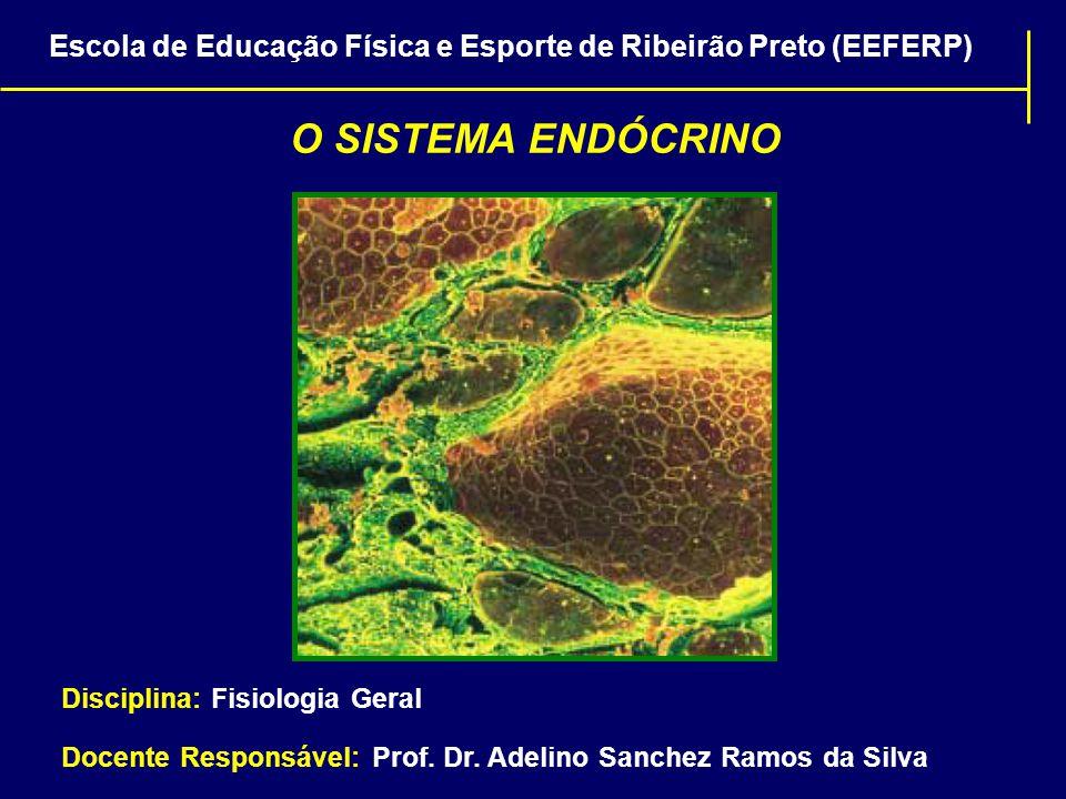  Hormônios peptídicos e as catecolaminas (aminas) são hidrossolúveis e são transportados dissolvidos no plasma;  Hormônios esteróides e tireoidianos (aminas) circulam no sangue em grande parte ligados às proteínas plasmáticas; Escola de Educação Física e Esporte de Ribeirão Preto (EEFERP) TRANSPORTE DE HORMÔNIOS PELO SANGUE HORMÔNIO LIVRE + PROTEÍNA DE LIGAÇÃO COMPLEXO HORMÔNIO-PROTEÍNA APENAS NESSA FORMA DIFUNDE-SE PARA O INTERIOR DAS CÉLULAS ALVO