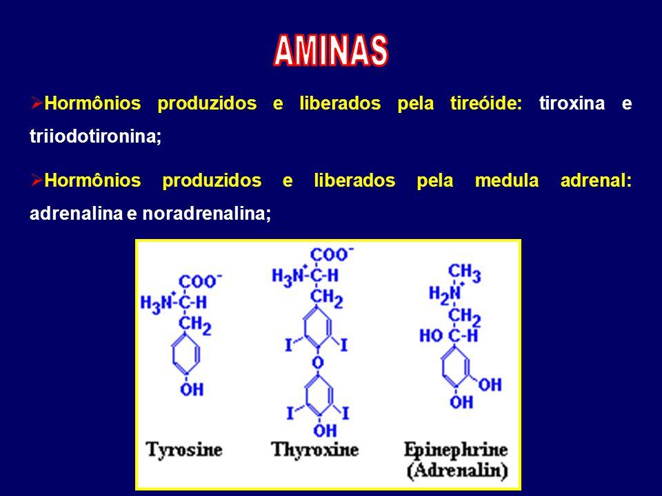  Hormônios produzidos e liberados pela tireóide: tiroxina e triiodotironina;  Hormônios produzidos e liberados pela medula adrenal: adrenalina e nor