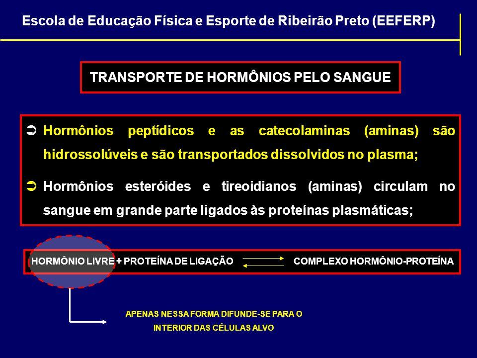  Hormônios peptídicos e as catecolaminas (aminas) são hidrossolúveis e são transportados dissolvidos no plasma;  Hormônios esteróides e tireoidianos
