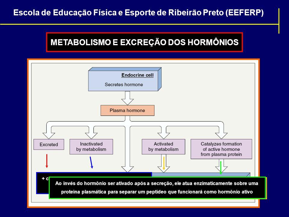METABOLISMO E EXCREÇÃO DOS HORMÔNIOS Rins + Fígado+ comum para as catecolaminas e hormônios peptídicos (máximo 1 hora no plasma) O hormônio secretado