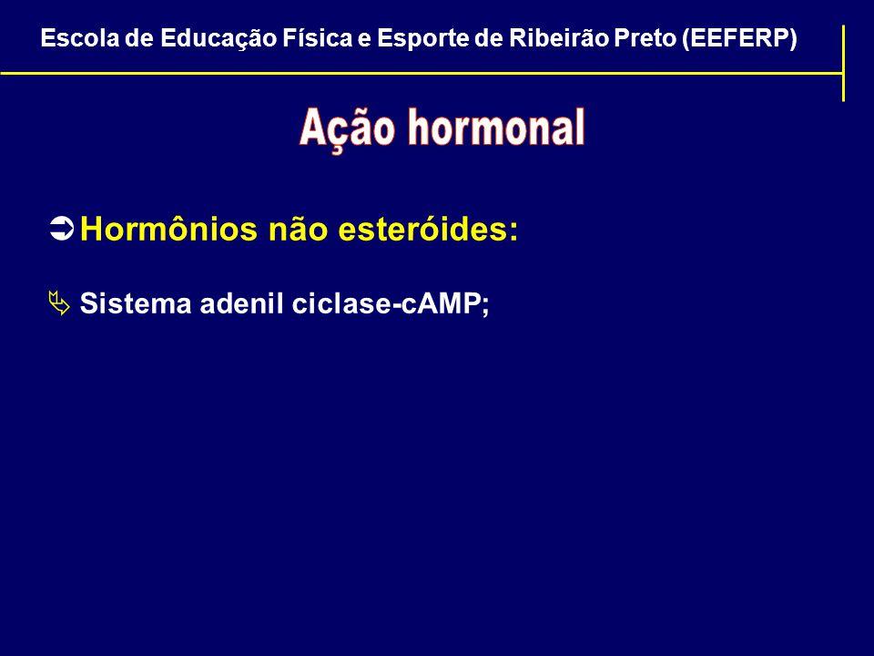  Hormônios não esteróides:  Sistema adenil ciclase-cAMP; Escola de Educação Física e Esporte de Ribeirão Preto (EEFERP)
