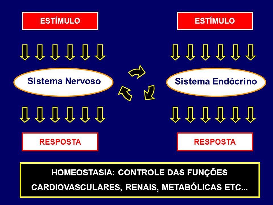 Sistema Nervoso Sistema Endócrino ESTÍMULO RESPOSTA HOMEOSTASIA: CONTROLE DAS FUNÇÕES CARDIOVASCULARES, RENAIS, METABÓLICAS ETC...