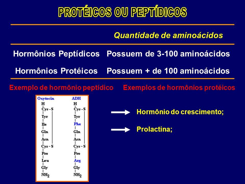 Quantidade de aminoácidos Hormônios PeptídicosPossuem de 3-100 aminoácidos Hormônios ProtéicosPossuem + de 100 aminoácidos Exemplo de hormônio peptídi