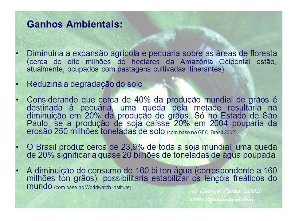 Ganhos Ambientais: Diminuiria a expansão agrícola e pecuária sobre as áreas de floresta ( cerca de oito milhões de hectares da Amazônia Ocidental estã