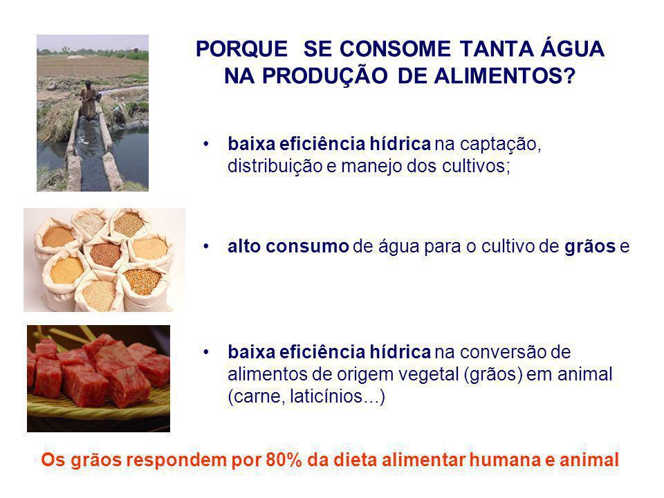 Consumo de ÁGUA por quilo de: Fonte: Christofidis, D.