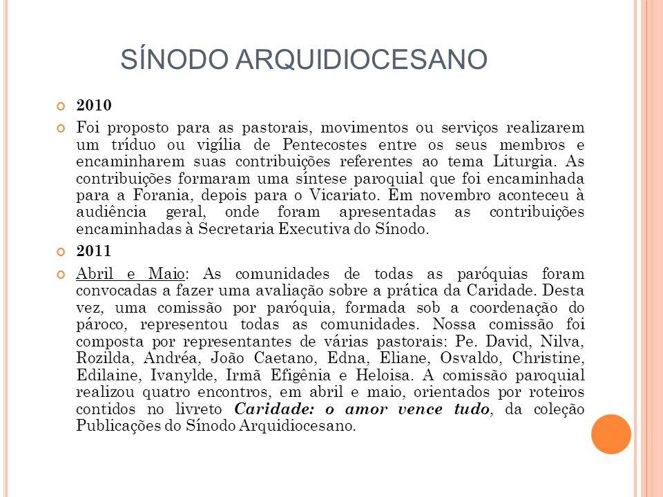 SÍNODO ARQUIDIOCESANO 2010 Foi proposto para as pastorais, movimentos ou serviços realizarem um tríduo ou vigília de Pentecostes entre os seus membros