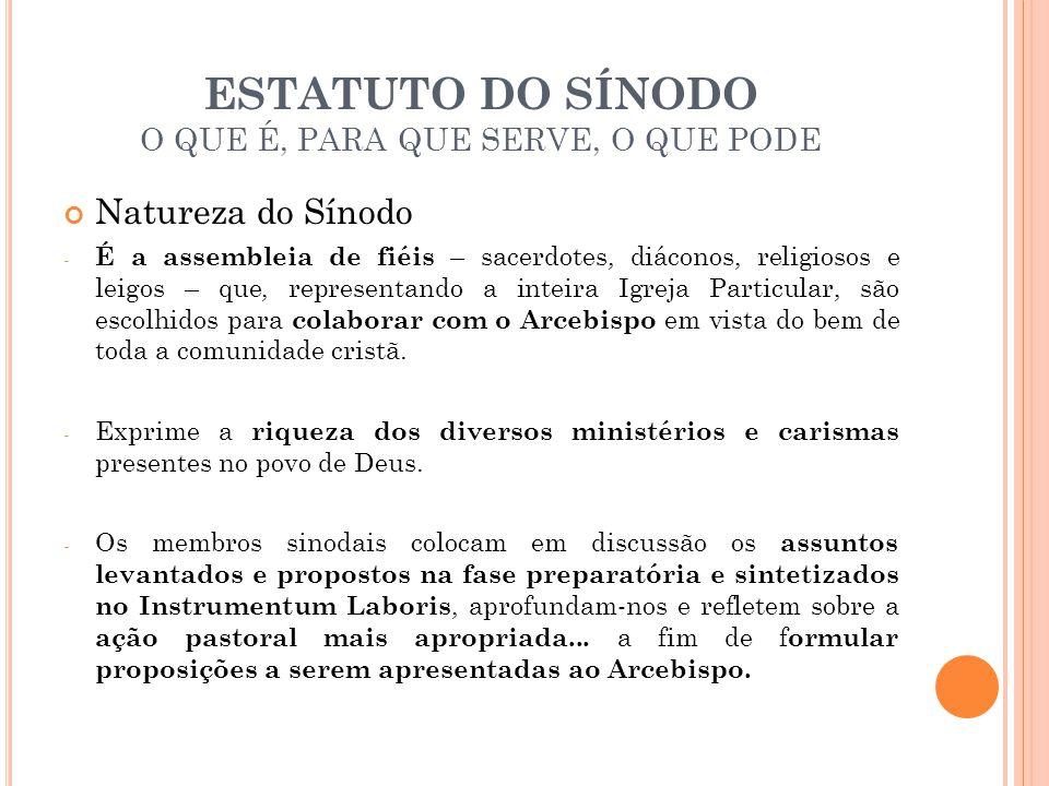 ESTATUTO DO SÍNODO O QUE É, PARA QUE SERVE, O QUE PODE Natureza do Sínodo - É a assembleia de fiéis – sacerdotes, diáconos, religiosos e leigos – que,