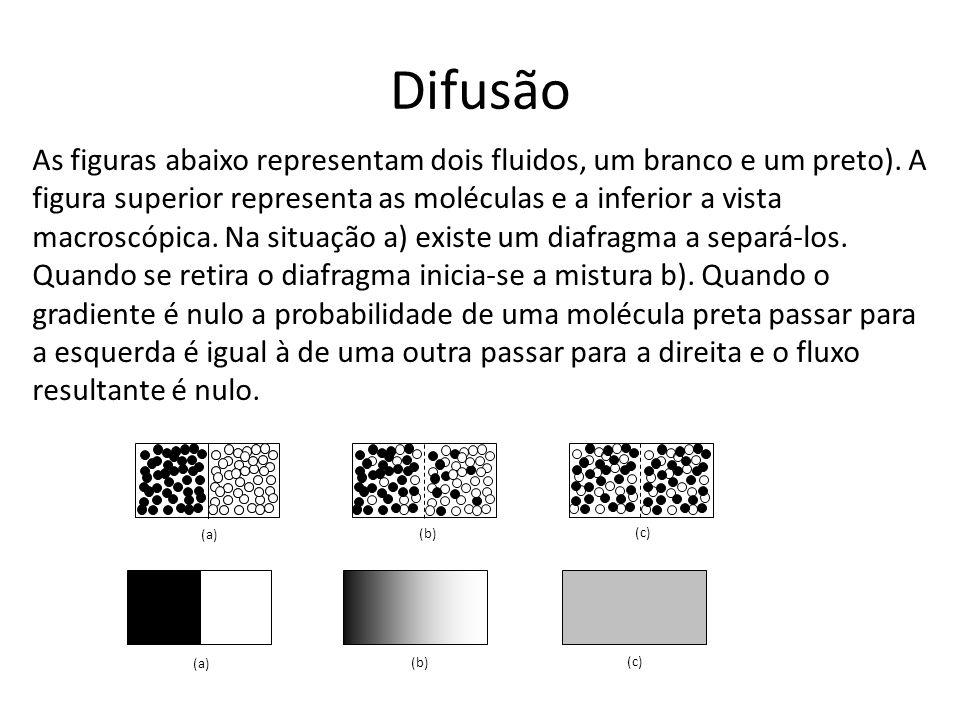 Difusão (a) (b) (c) (a) (b) (c) As figuras abaixo representam dois fluidos, um branco e um preto). A figura superior representa as moléculas e a infer