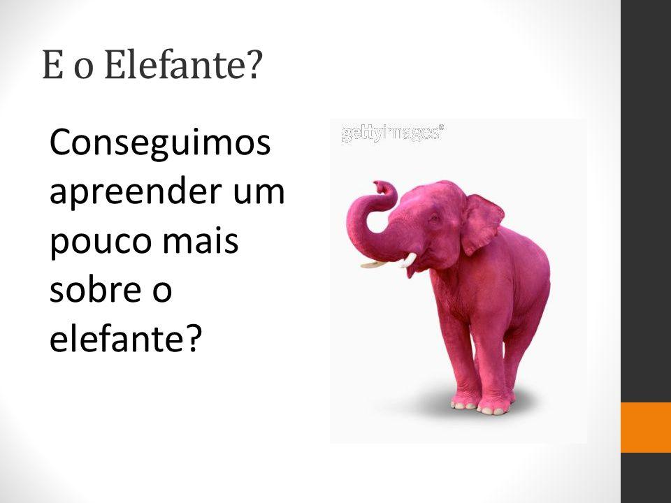 E o Elefante? Conseguimos apreender um pouco mais sobre o elefante?