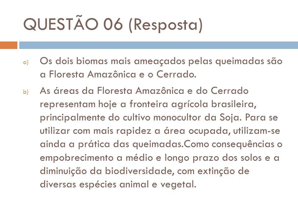 QUESTÃO 06 (Resposta) a) Os dois biomas mais ameaçados pelas queimadas são a Floresta Amazônica e o Cerrado. b) As áreas da Floresta Amazônica e do Ce