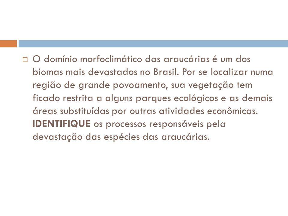  O domínio morfoclimático das araucárias é um dos biomas mais devastados no Brasil. Por se localizar numa região de grande povoamento, sua vegetação