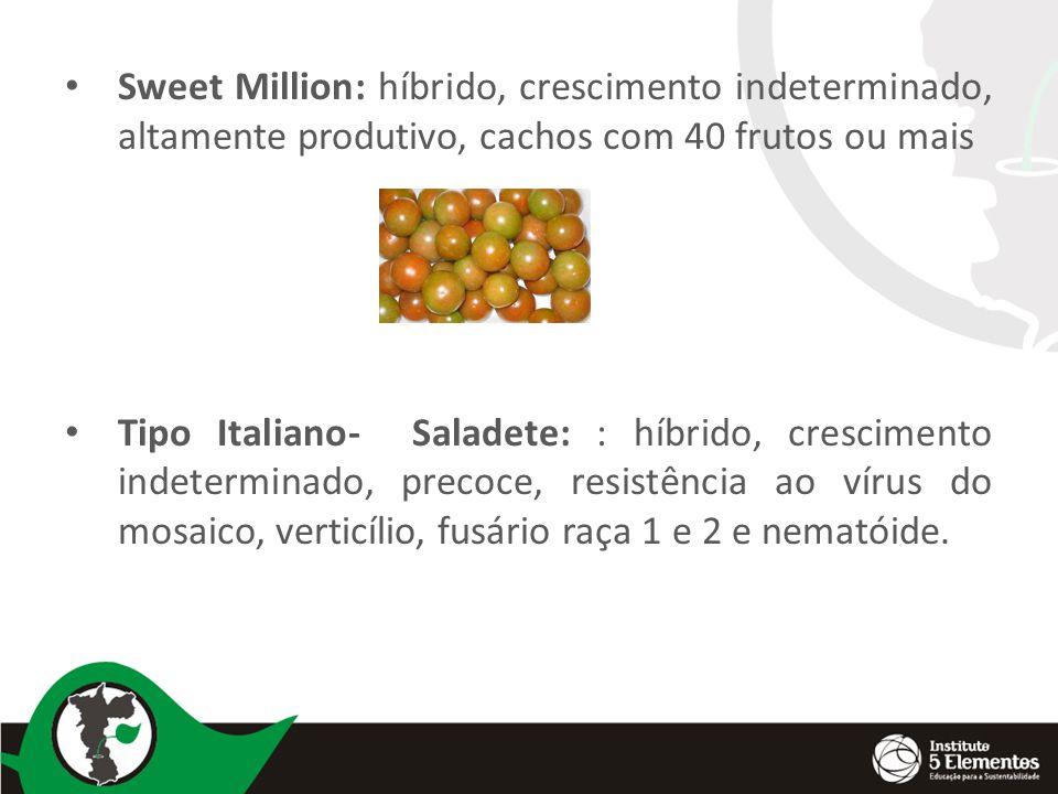 Sweet Million: híbrido, crescimento indeterminado, altamente produtivo, cachos com 40 frutos ou mais Tipo Italiano- Saladete: : híbrido, crescimento indeterminado, precoce, resistência ao vírus do mosaico, verticílio, fusário raça 1 e 2 e nematóide.