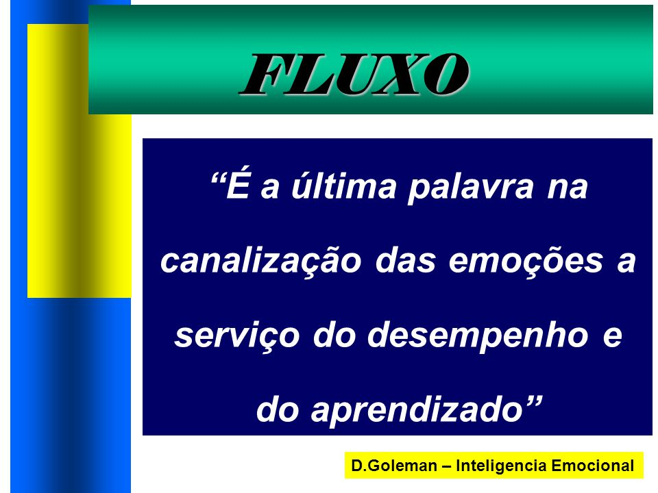 """FLUXO """"É a última palavra na canalização das emoções a serviço do desempenho e do aprendizado"""" D.Goleman – Inteligencia Emocional"""