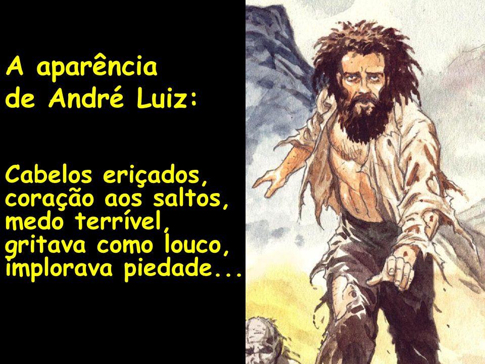 A aparência de André Luiz: Cabelos eriçados, coração aos saltos, medo terrível, gritava como louco, implorava piedade...