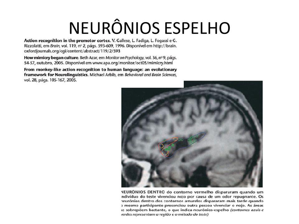 MECANISMOS DA EMPATIA NEURÔNIOS –ESPELHO MECANISMOS DO APRENDIZADO MODELAR NEURÔNIOS –ESPELHO
