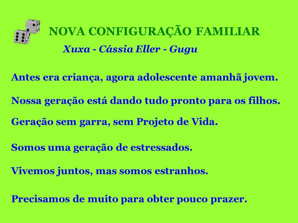 NOVA CONFIGURAÇÃO FAMILIAR Xuxa - Cássia Eller - Gugu Nossa geração está dando tudo pronto para os filhos. Geração sem garra, sem Projeto de Vida. Viv