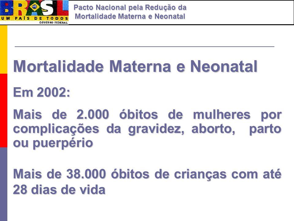 Mortalidade Materna e Neonatal Em 2002: Mais de 2.000 óbitos de mulheres por complicações da gravidez, aborto, parto ou puerpério Mais de 38.000 óbito