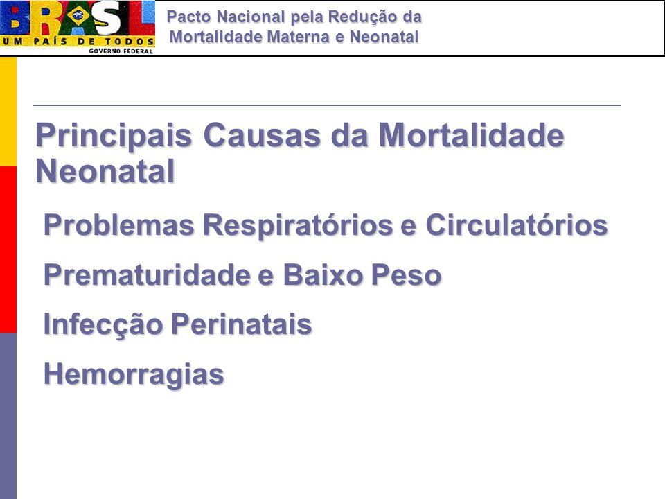Principais Causas da Mortalidade Neonatal Problemas Respiratórios e Circulatórios Problemas Respiratórios e Circulatórios Prematuridade e Baixo Peso P