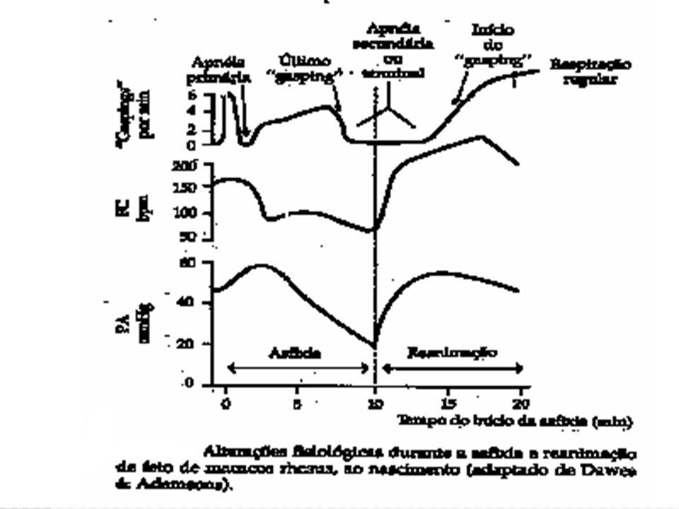 Seqüelas ACOMETIMENTO MULTIORGÂNICO DA ASFIXIA PERINATAL: Cerebral – encefalopatia hipoxico-isquemica; Cardíaco – isquemia miocárdica transitória e choque cardiogênico; Pulmonar – diminuição na síntese de surfactante, hemorragia pulmonar e hipertensão pulmonar persistente; Urinário – IRA por necrose tubular Gastrintestinais – Enterocolite Necrosante; Hematológica – CID, plaquetopenia; Metabólica – hipo/hiperglicemia, hipercalcemia;