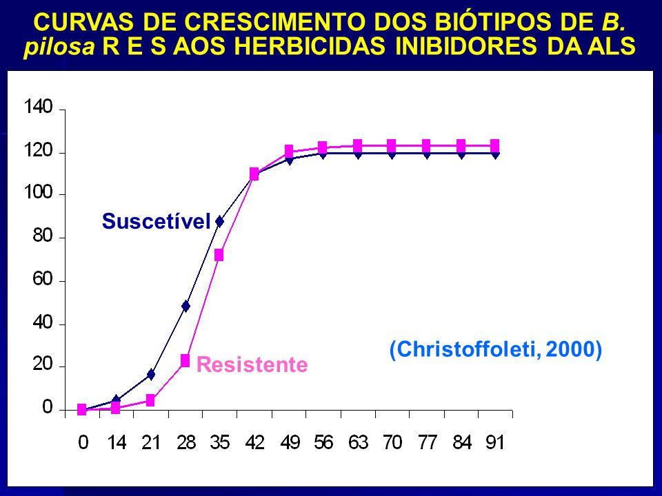 Dias após semeadura Biomassa (g/pl.) (Christoffoleti, 2000) CURVAS DE CRESCIMENTO DOS BIÓTIPOS DE B. pilosa R E S AOS HERBICIDAS INIBIDORES DA ALS Res