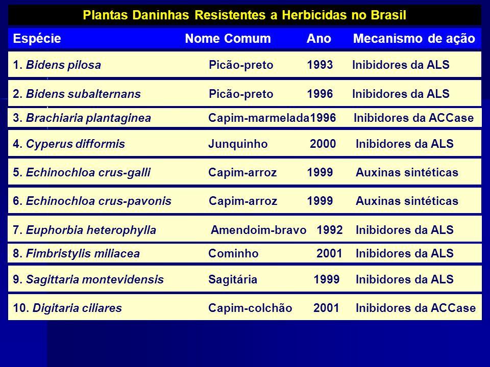 Plantas Daninhas Resistentes a Herbicidas no Brasil Espécie Nome ComumAno Mecanismo de ação 1. Bidens pilosaPicão-preto1993 Inibidores da ALS 2. Biden