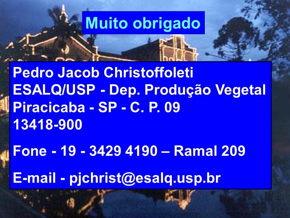 Muito obrigado Pedro Jacob Christoffoleti ESALQ/USP - Dep. Produção Vegetal Piracicaba - SP - C. P. 09 13418-900 Fone - 19 - 3429 4190 – Ramal 209 E-m
