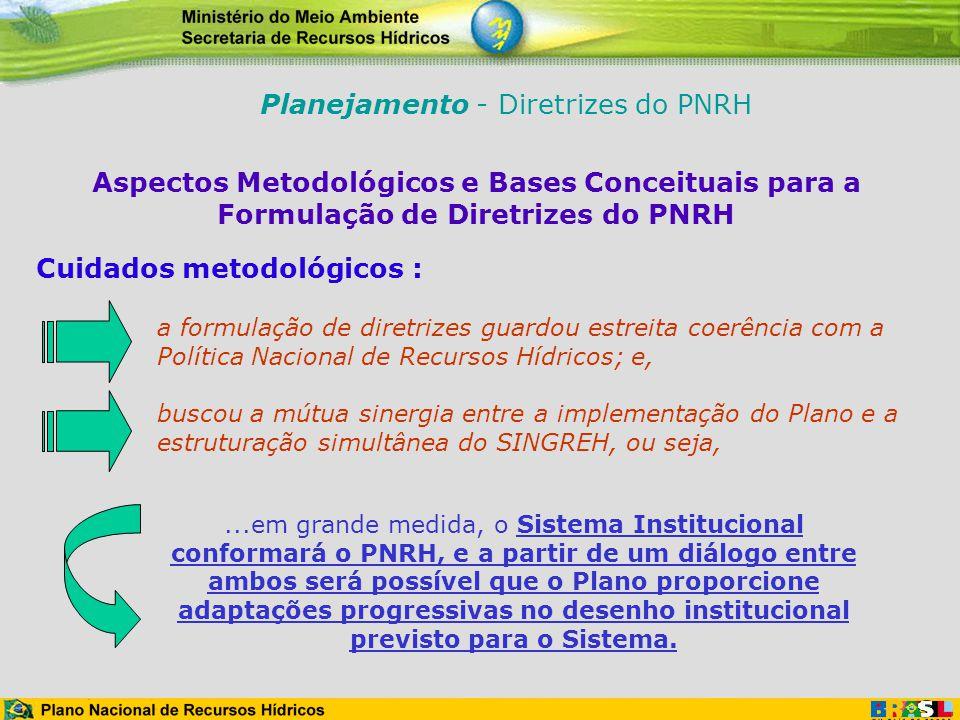 Aspectos Metodológicos e Bases Conceituais para a Formulação de Diretrizes do PNRH Cuidados metodológicos :...em grande medida, o Sistema Instituciona