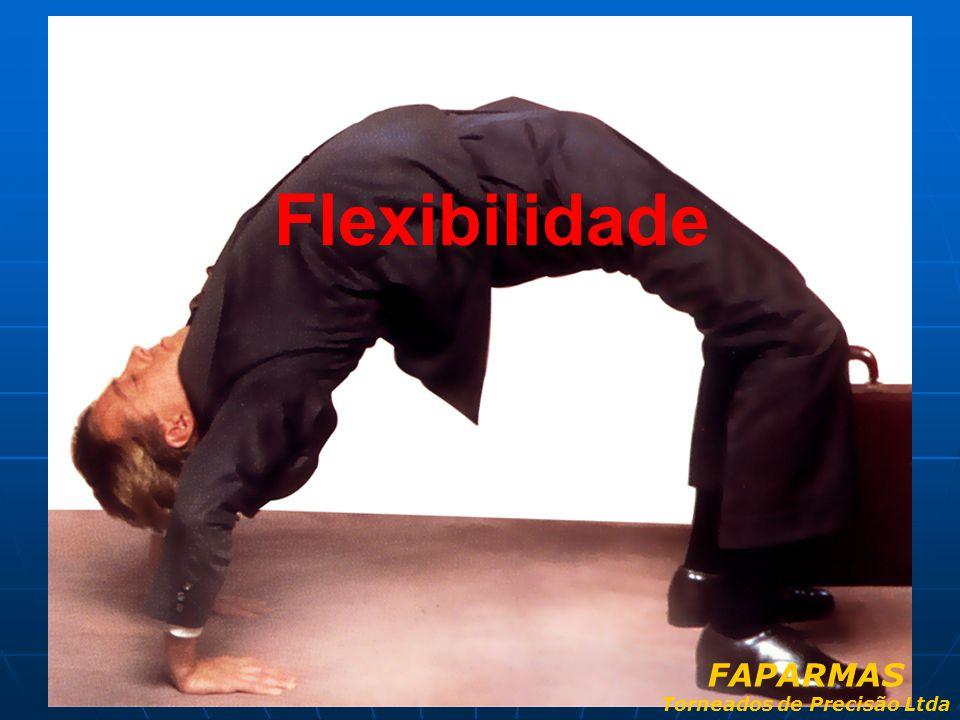 Flexibilidade FAPARMAS Torneados de Precisão Ltda