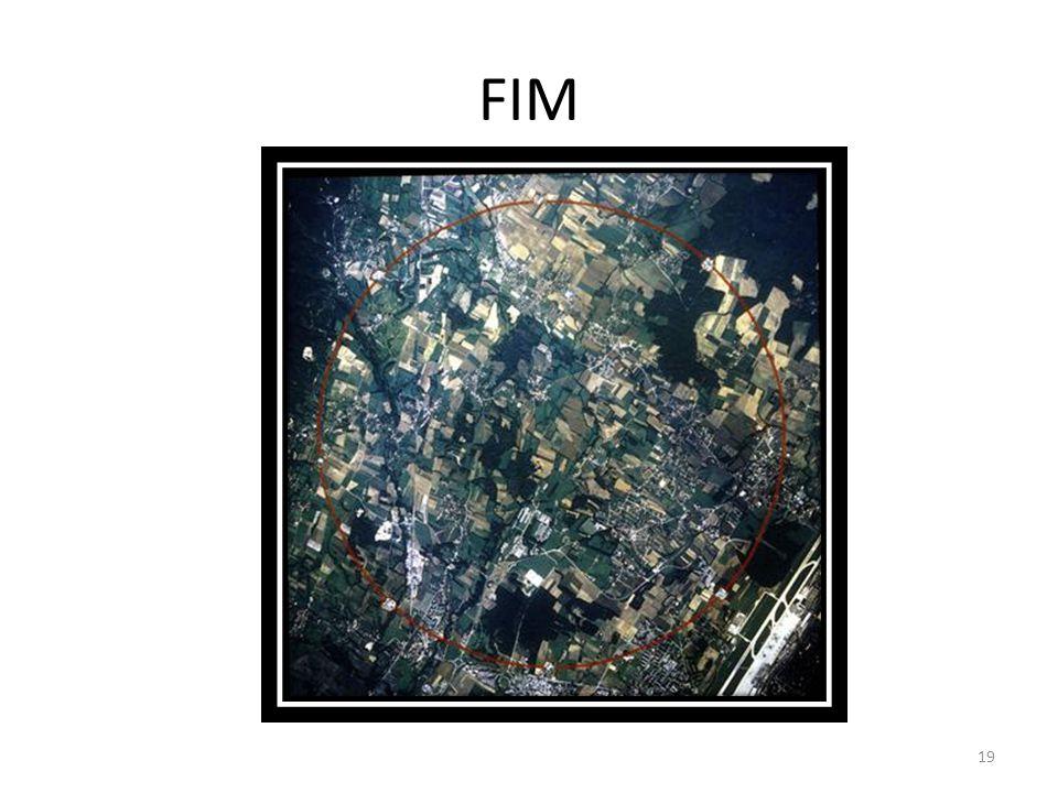 FIM 19
