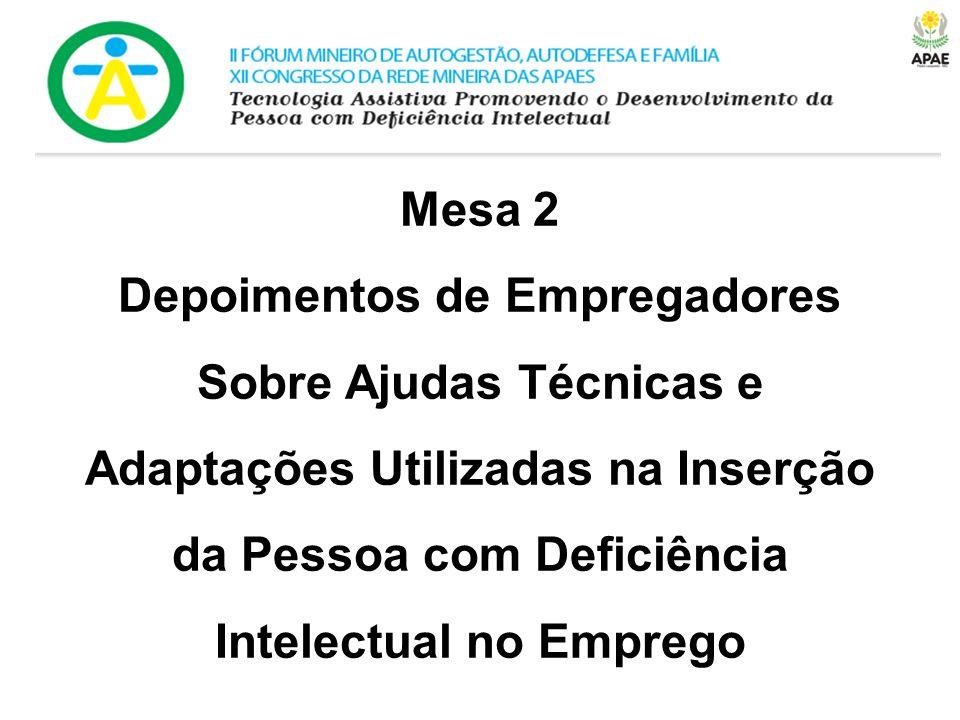 Mesa 2 Depoimentos de Empregadores Sobre Ajudas Técnicas e Adaptações Utilizadas na Inserção da Pessoa com Deficiência Intelectual no Emprego