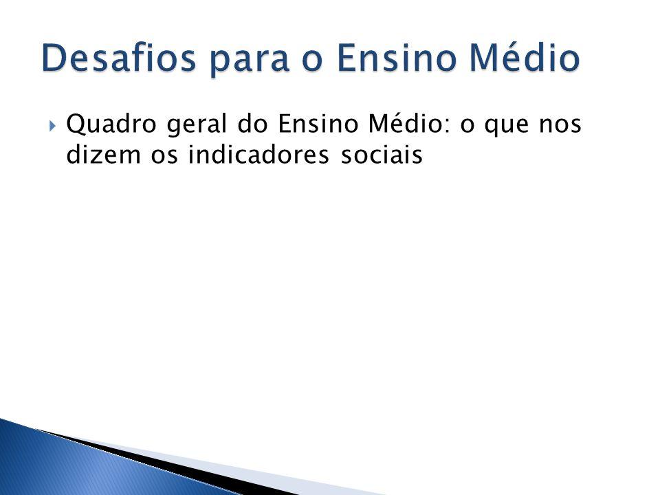 Quadro geral do Ensino Médio: o que nos dizem os indicadores sociais