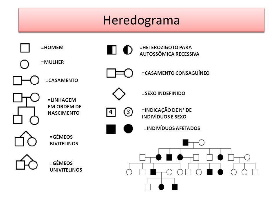 EXERCÍCIOS Heredograma =HOMEM =MULHER =CASAMENTO =LINHAGEM EM ORDEM DE NASCIMENTO =GÊMEOS BIVITELINOS =GÊMEOS UNIVITELINOS =HETEROZIGOTO PARA AUTOSSÔM