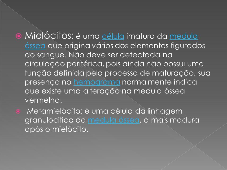  Mielócitos: é uma célula imatura da medula óssea que origina vários dos elementos figurados do sangue. Não deve ser detectada na circulação periféri