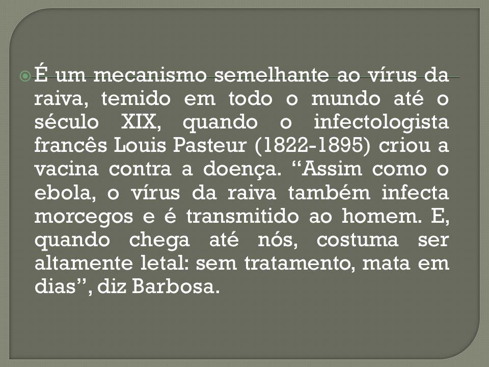  É um mecanismo semelhante ao vírus da raiva, temido em todo o mundo até o século XIX, quando o infectologista francês Louis Pasteur (1822-1895) crio