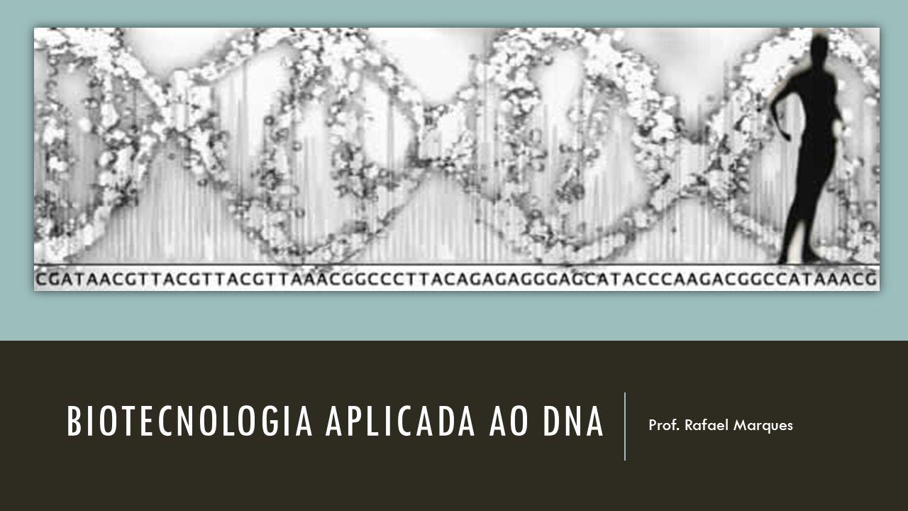 BIOTECNOLOGIA APLICADA AO DNA Prof. Rafael Marques