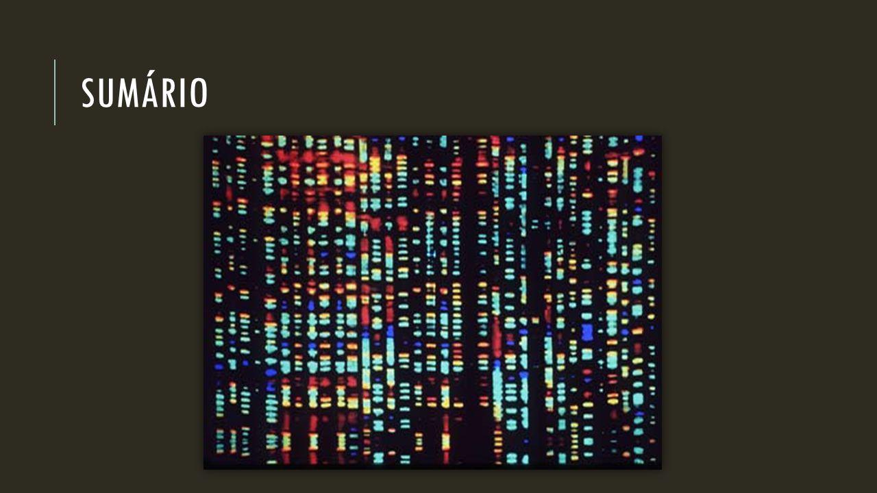 ORGANISMOS GENETICAMENTE MODIFICADOS (OGM) SELEÇÃO ARTIFICIAL -VS- TRANSGENIA SELEÇÃO DE ORGANISMOS CONTENDO CARACTERÍSTICAS DE INTERESSE SELEÇÃO DE GENES ESPECÍFICOS DE INTERESSE OGM SURGEM ALEATORIAMENTE COM O SURGMINETO DE DETERMINADAS MUTAÇÕES OGM SURGEM A PARTIR DA INTENÇÃO DO MANIPULADOR POUCO EFICIENTE; PODE LEVAR MUITO TEMPO PARA ACONTECER E COM POSSIBILIDADES LIMITADAS MAIS EFICIENTE; PODE- SE SELEIONAR VÁRIAS CARACTERÍSTICAS, INCLUSIVE DE DIFERENTES ESPÉCIES