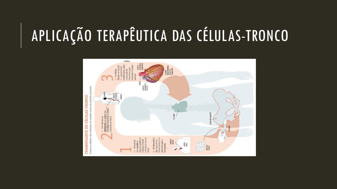 APLICAÇÃO TERAPÊUTICA DAS CÉLULAS-TRONCO