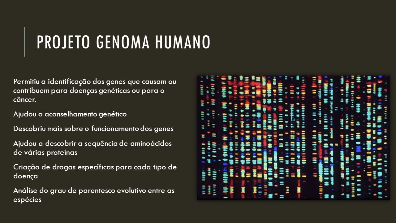 PROJETO GENOMA HUMANO Permitiu a identificação dos genes que causam ou contribuem para doenças genéticas ou para o câncer. Ajudou o aconselhamento gen
