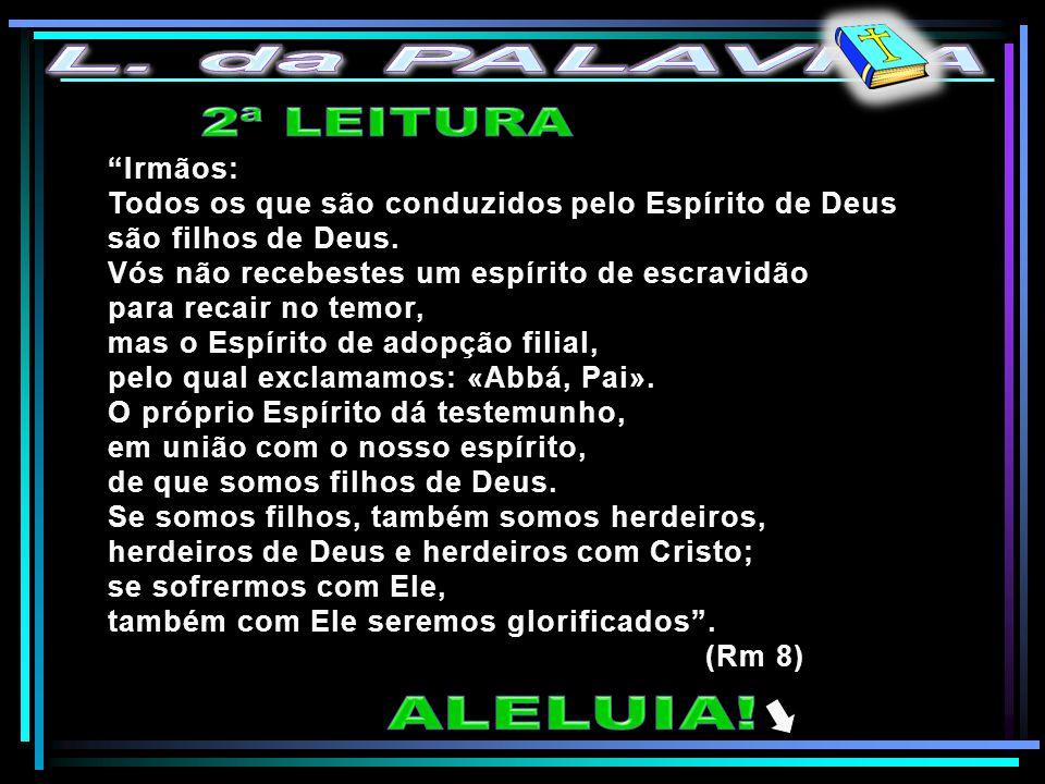 Irmãos: Todos os que são conduzidos pelo Espírito de Deus são filhos de Deus.
