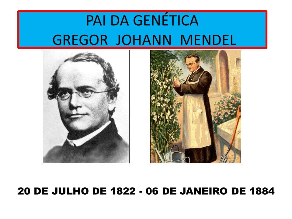 PAI DA GENÉTICA GREGOR JOHANN MENDEL 20 DE JULHO DE 1822 - 06 DE JANEIRO DE 1884