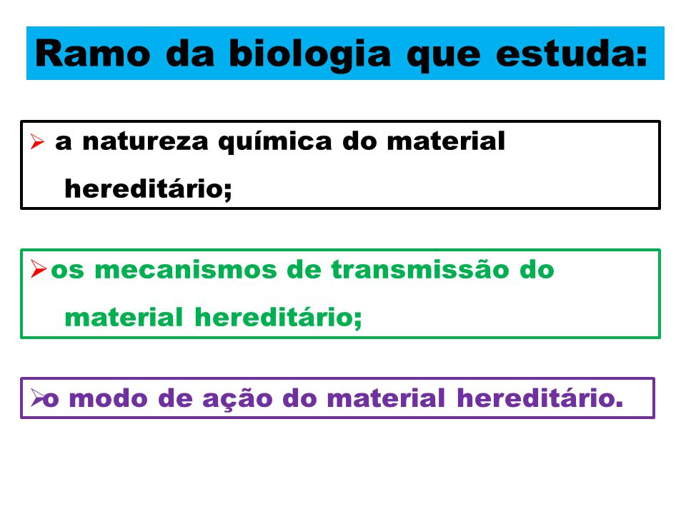 Ramo da biologia que estuda:  a natureza química do material hereditário;  os mecanismos de transmissão do material hereditário;  o modo de ação do material hereditário.