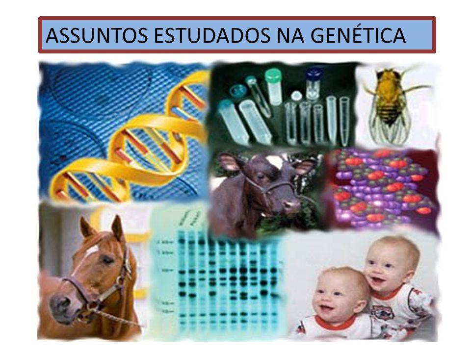 ESTUDO DOS GENES E DA HEREDITARIEDADE