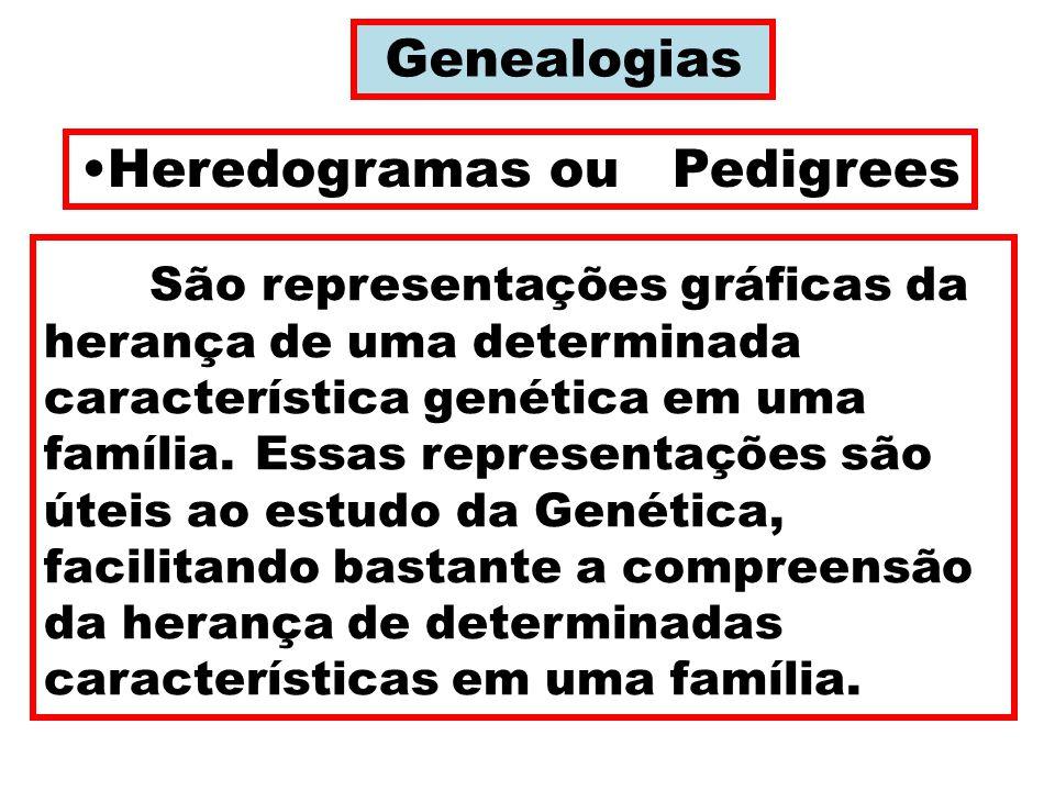 Genealogias Heredogramas ou Pedigrees São representações gráficas da herança de uma determinada característica genética em uma família.Essas representações são úteis ao estudo da Genética, facilitando bastante a compreensão da herança de determinadas características em uma família.