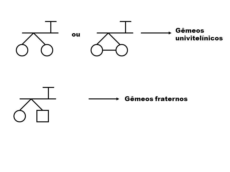 Gêmeos univitelínicos ou Gêmeos fraternos