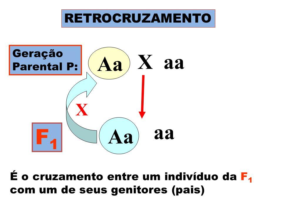 RETROCRUZAMENTO Geração Parental P: Aa X aa F1F1 Aa aa Aa É o cruzamento entre um indivíduo da F 1 com um de seus genitores (pais) X