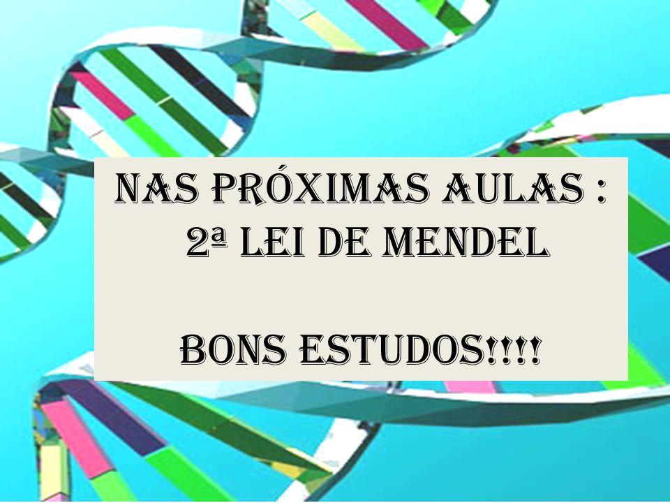 NAS PRÓXIMAS AULAS : 2ª LEI DE MENDEL Bons estudos!!!!