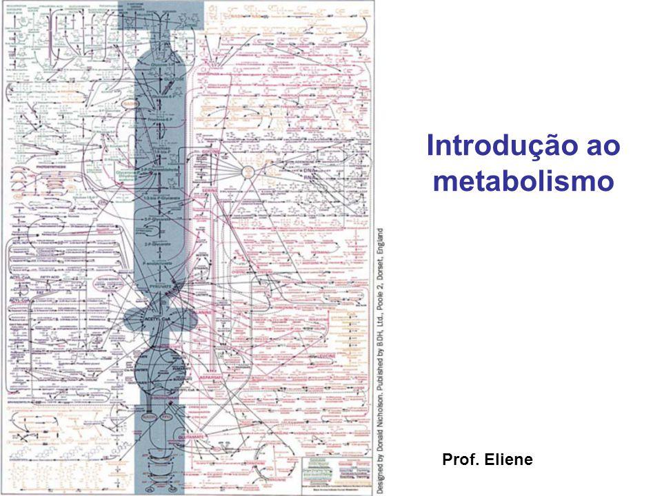 Introdução ao metabolismo Prof. Eliene