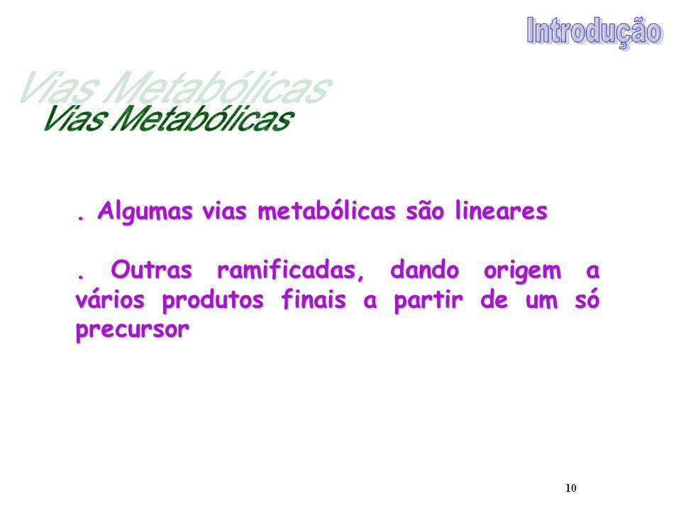 10. Algumas vias metabólicas são lineares. Outras ramificadas, dando origem a vários produtos finais a partir de um só precursor