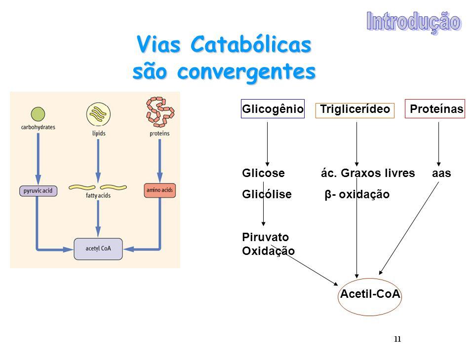 11 Vias Catabólicas são convergentes Glicogênio Triglicerídeo Proteínas Glicose ác. Graxos livres aas Glicólise β- oxidação Piruvato Oxidação Acetil-C